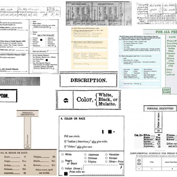 Census Question Collage