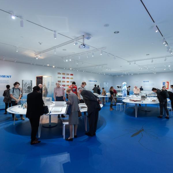 Foto da instalação da cidade de Germ: micróbios e metrópole, com uma multidão olhando a exposição.