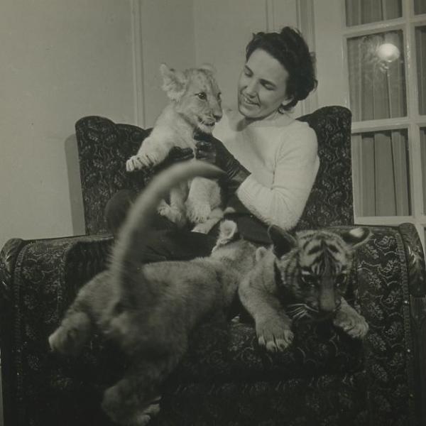 """Uma foto das """"Fotos do zoológico de Bob Sandberg (Bronx) - Sra. Fred Martini""""."""