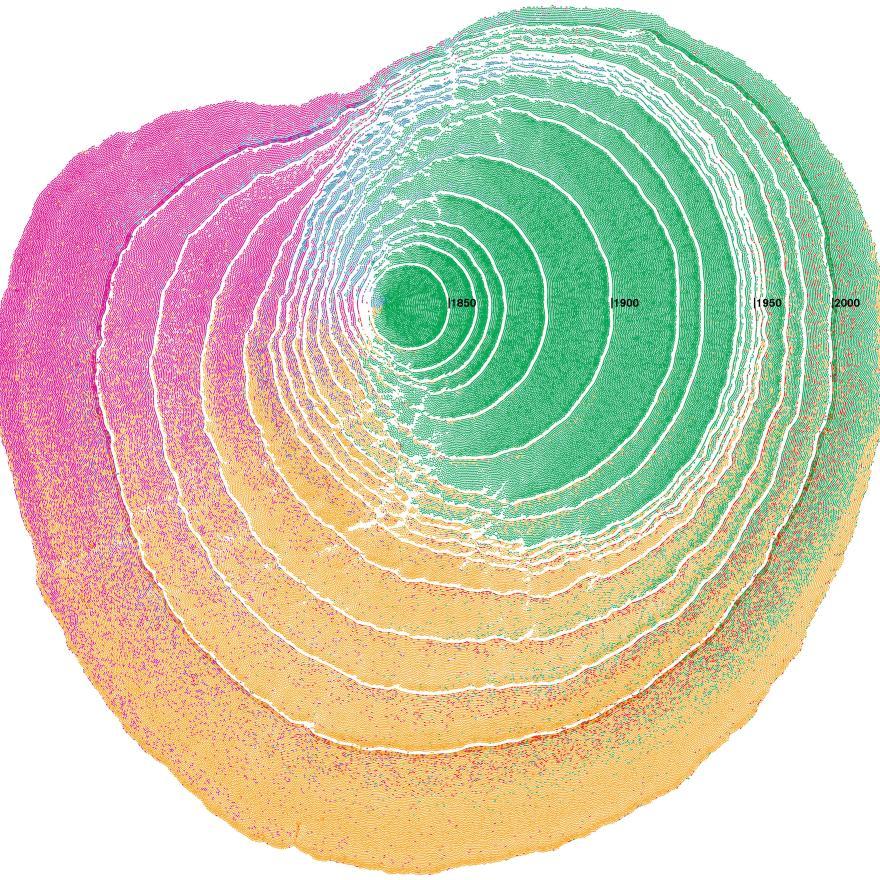 Los patrones de inmigración a los Estados Unidos se visualizan como anillos de árboles.